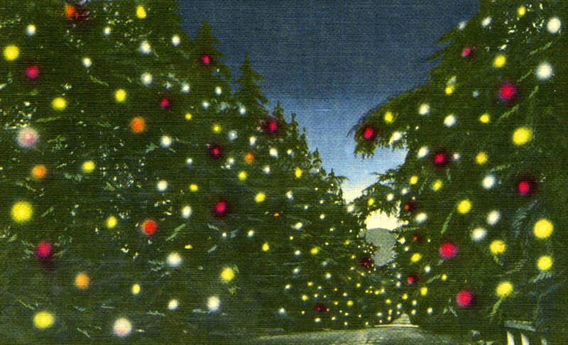 A color postcard of Altadena's Santa Rosa Avenue transformed into Christmas Tree Lane. Courtesy of the Security Pacific National Bank Collection - Los Angeles Public Library.