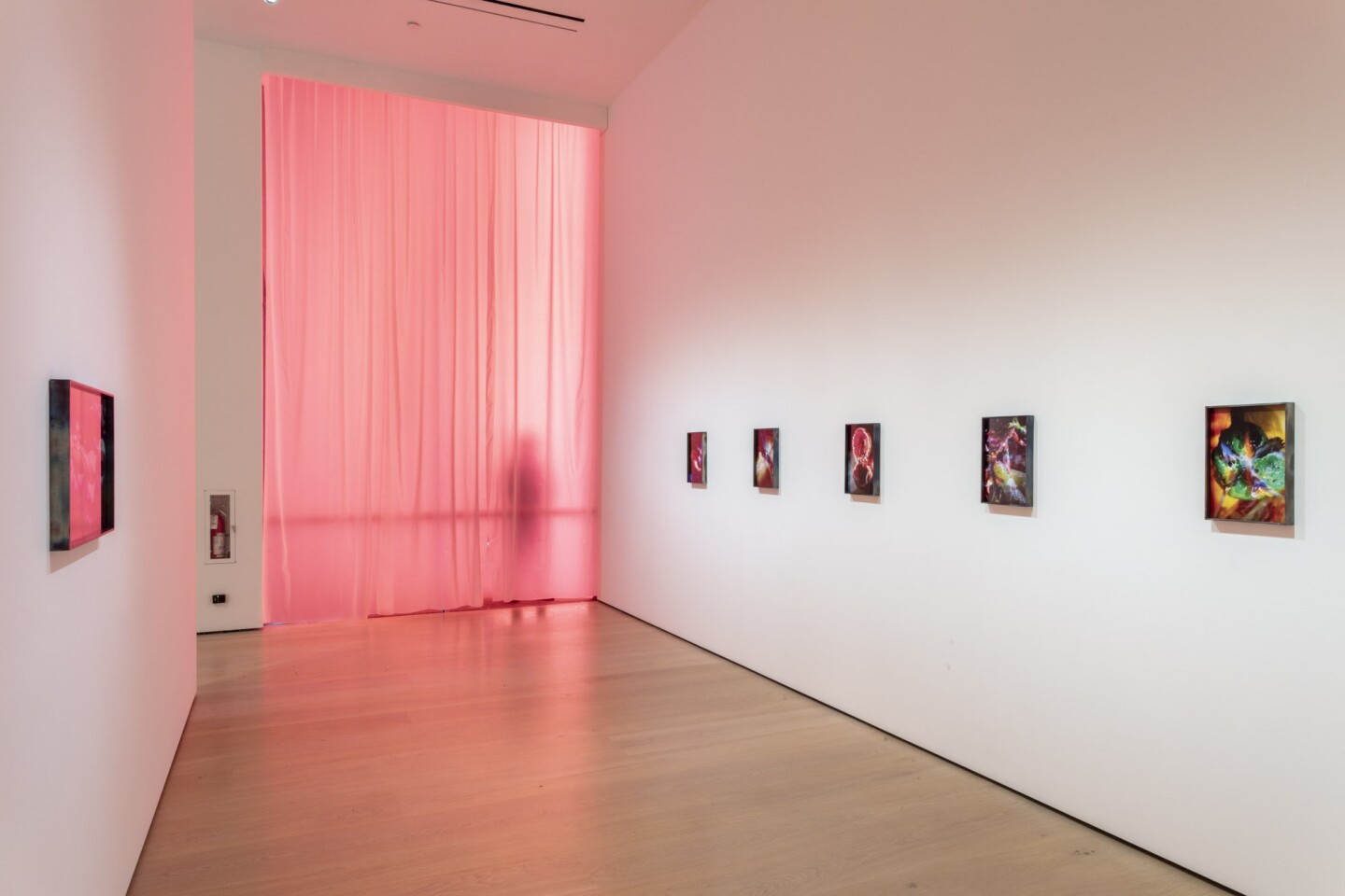 "An installation view of Diane Severin Nguyen's work at ""Made in L.A. 2020: a version."" at Hammer Museum, Los Angeles. 
