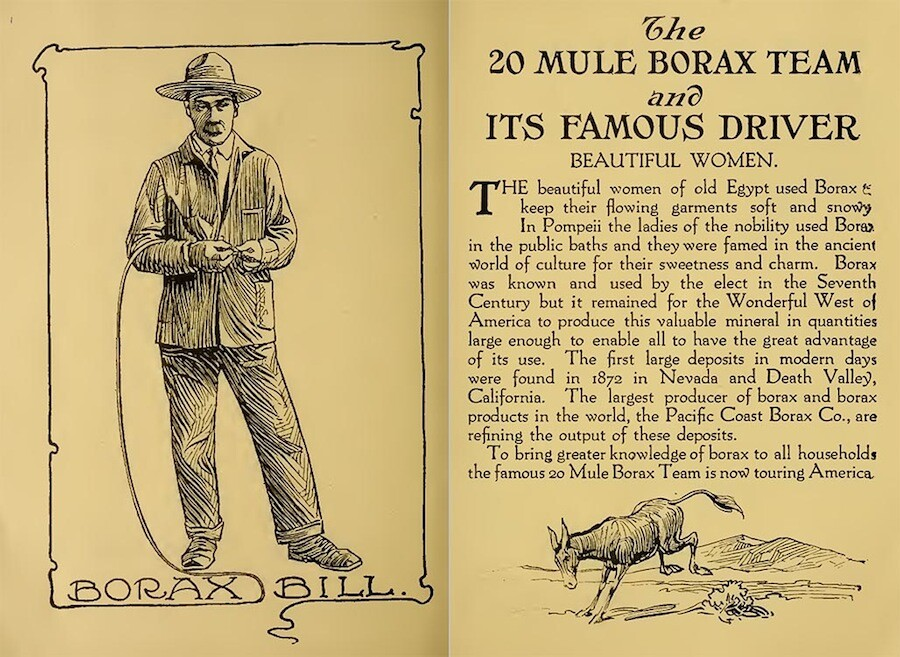 Twenty Mule Borax Team promotional brochure