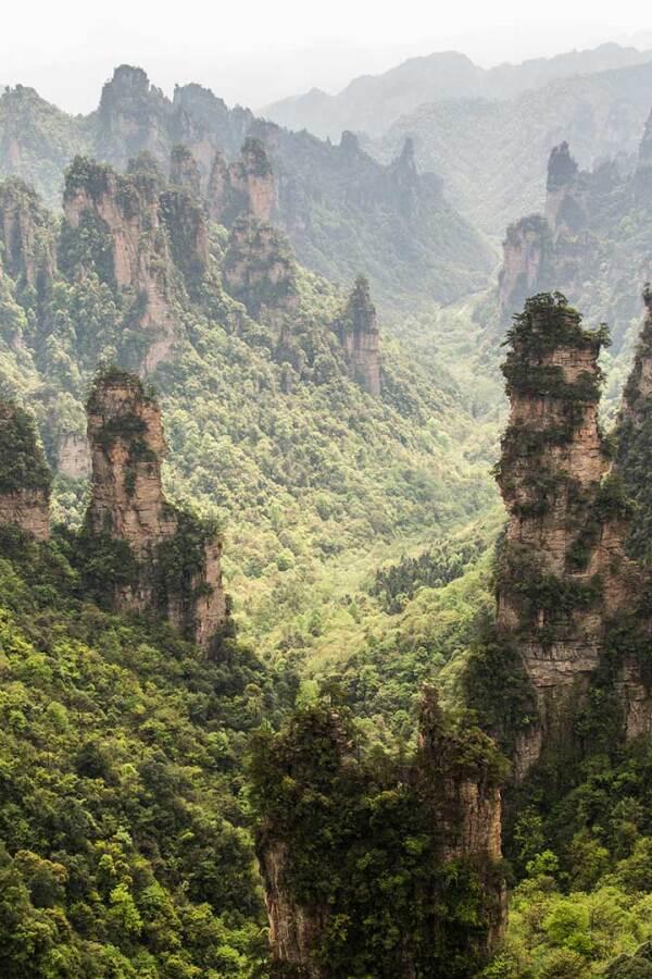 The Zhangjiajie Mountains in China. (large)