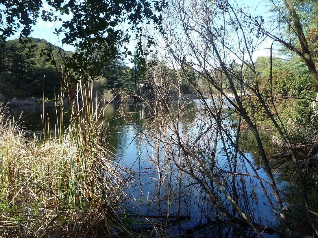 Franklin Canyon Park (2)