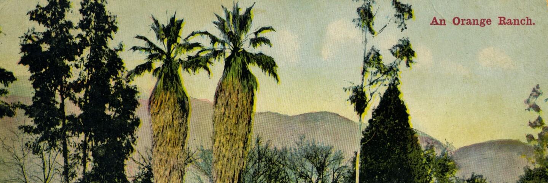 Orange Ranch postcard (cropped for header)