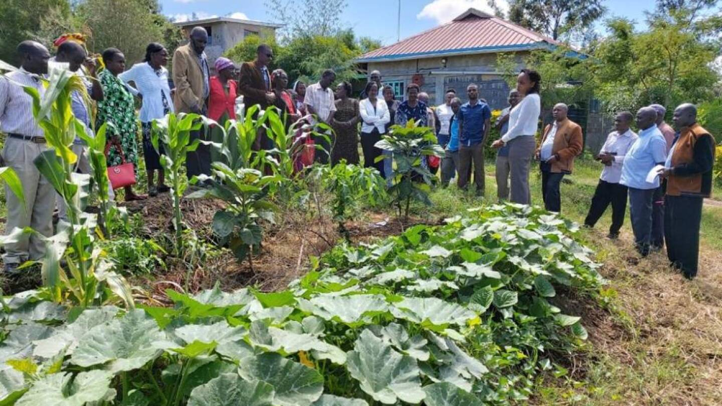 Farmers watch a demonstration on growing local crops by Seed Savers Network-Kenya in Gilgil, Kenya, December 2019. | HANDOUT/Seed Savers Network-Kenya.