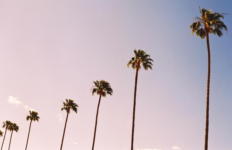 Studio City (4) .jpg