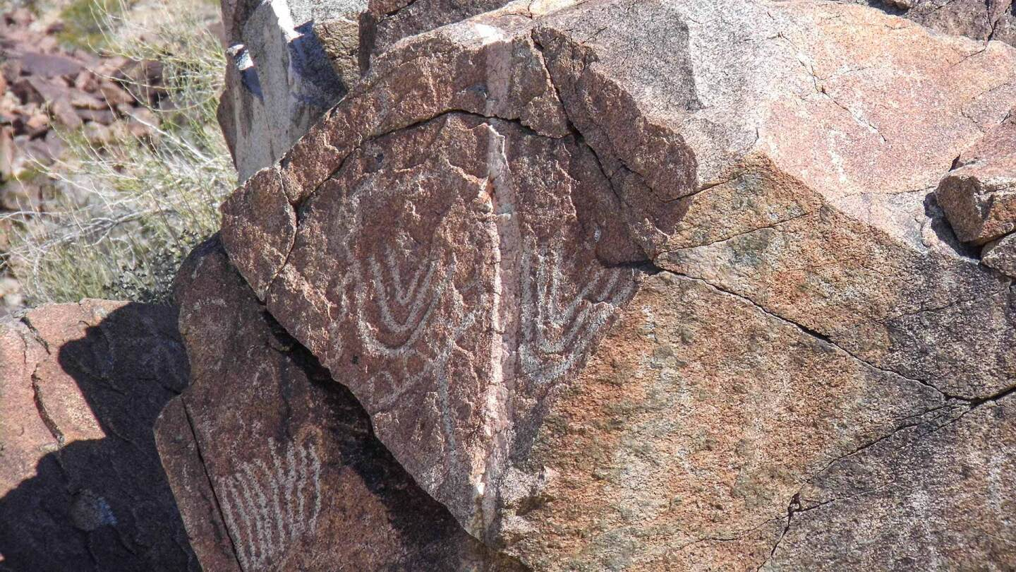 Native American petroglyphs at Corn Springs (probably from the Chemehuevi Tribe).