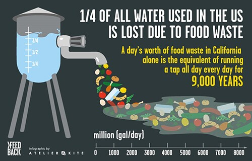 water infographic on food waste