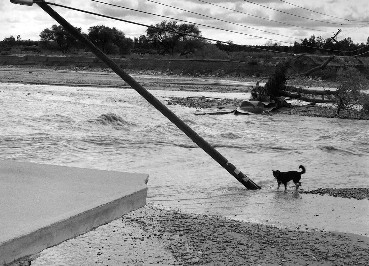 "Sant Khalsa, ""After flood, Santa Ana River, Redlands"" | Courtesy of the artist In the Sunshine of Neglect"