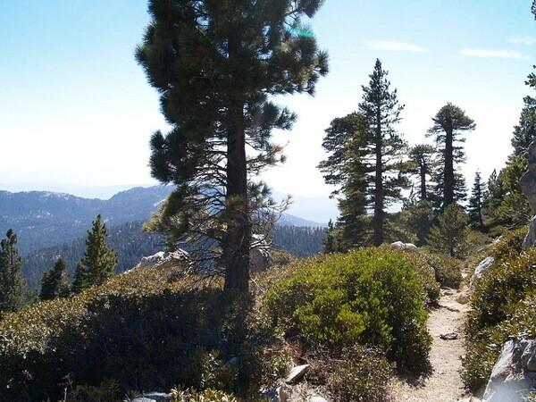 san-jacinto-peak