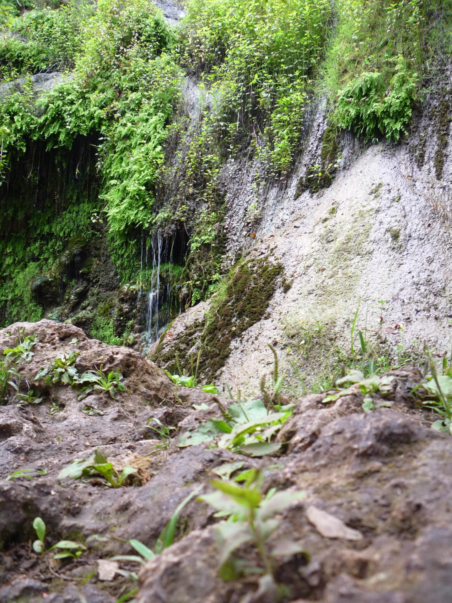 The lower falls at the end Escondido Canyon Park and Falls accessed via the four-mile round-trip hike through oak woodland, riparian woodland and coastal sage scrub habitats.