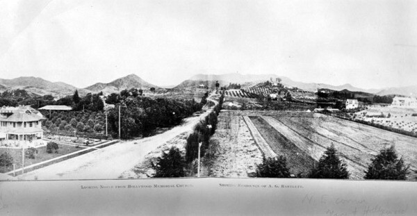 View of Vine Street in 1907, looking north from Prospect Avenue. Courtesy of the Photo Collection - Los Angeles Public Library.