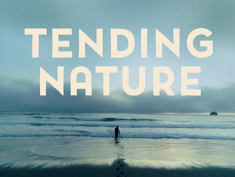 tending nature hero