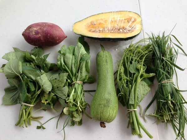 The contents of a typical CSA box