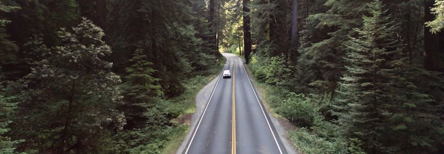"Car driving through Northern California forests. | Still from ""Tending Nature"""