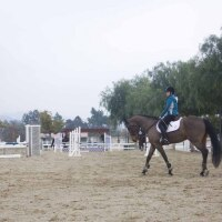 130207 equestrian120.JPG