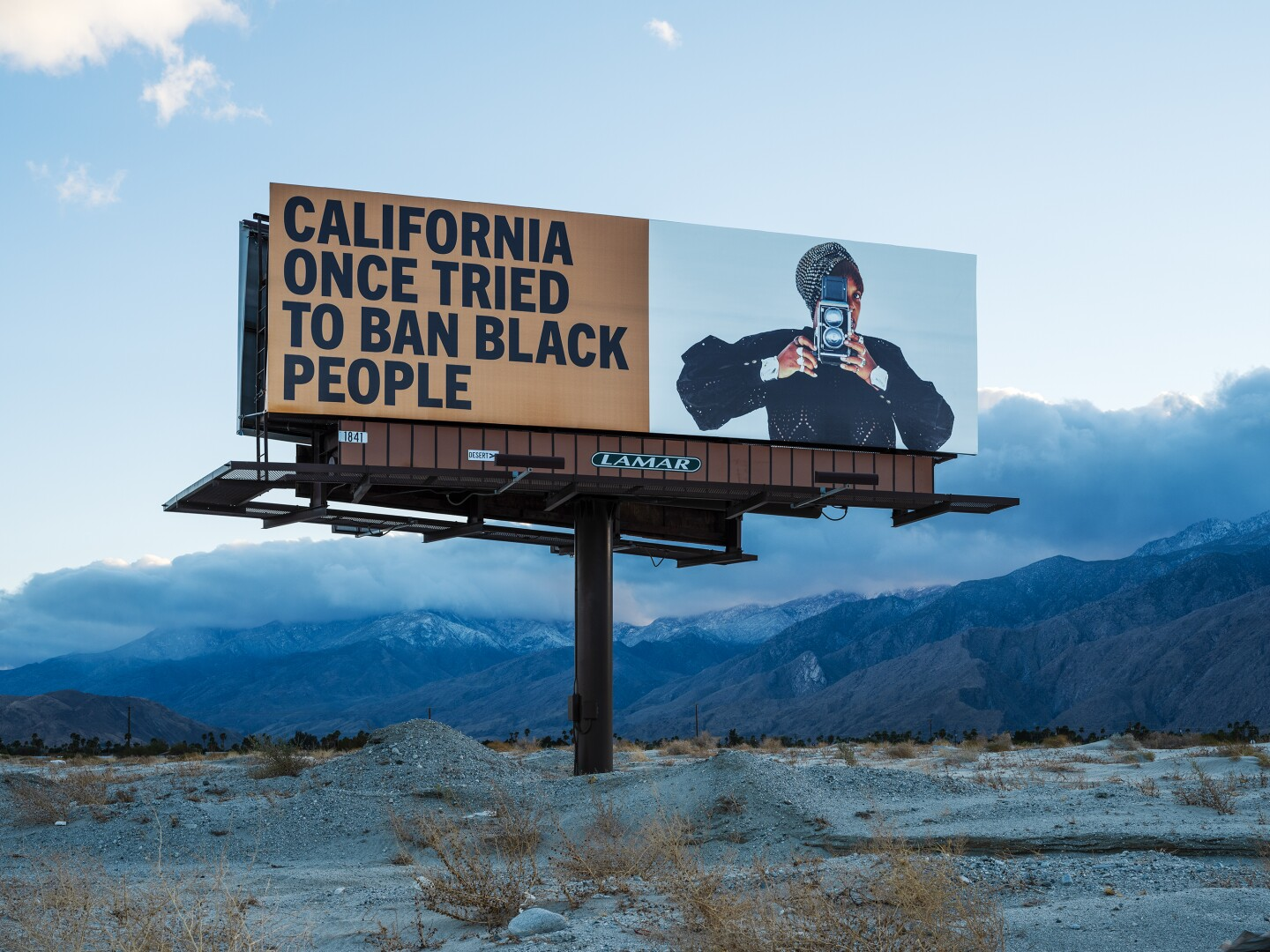 """One of Simmons' billboards reads, """"California once tried to ban Black people."""" To the right of the text is a Black woman holding a vintage camera."""