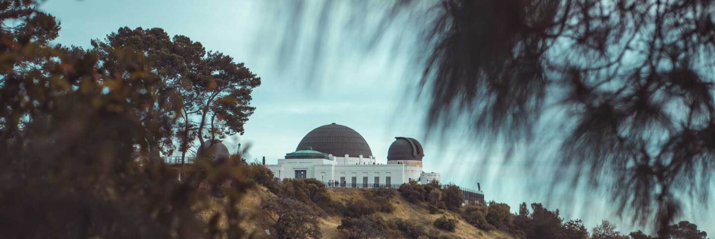 View of Griffith Observatory from Griffith Park beneath a tree | Patrick T'Kindt / Unsplash