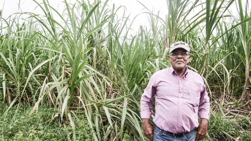 Former sugar cane worker in Nicaragua | Photo: Clarissa Wei