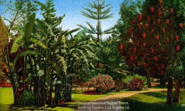 pepper-trees-and-banana-palms.jpg