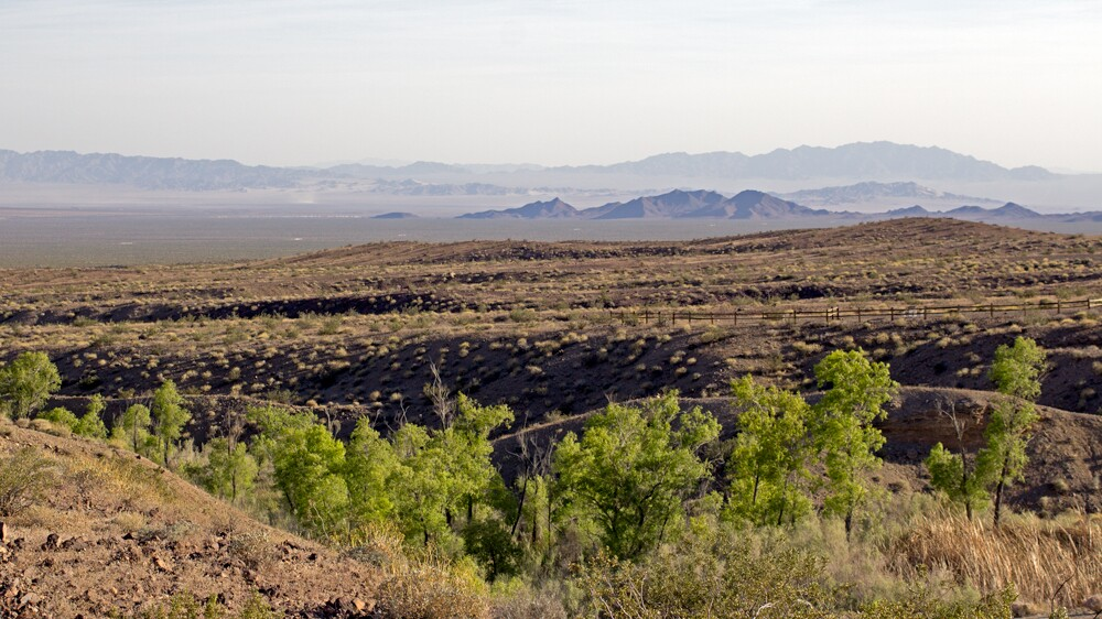 View of the Cadiz Valley from Bonanza Spring | Photo: Chris Clarke