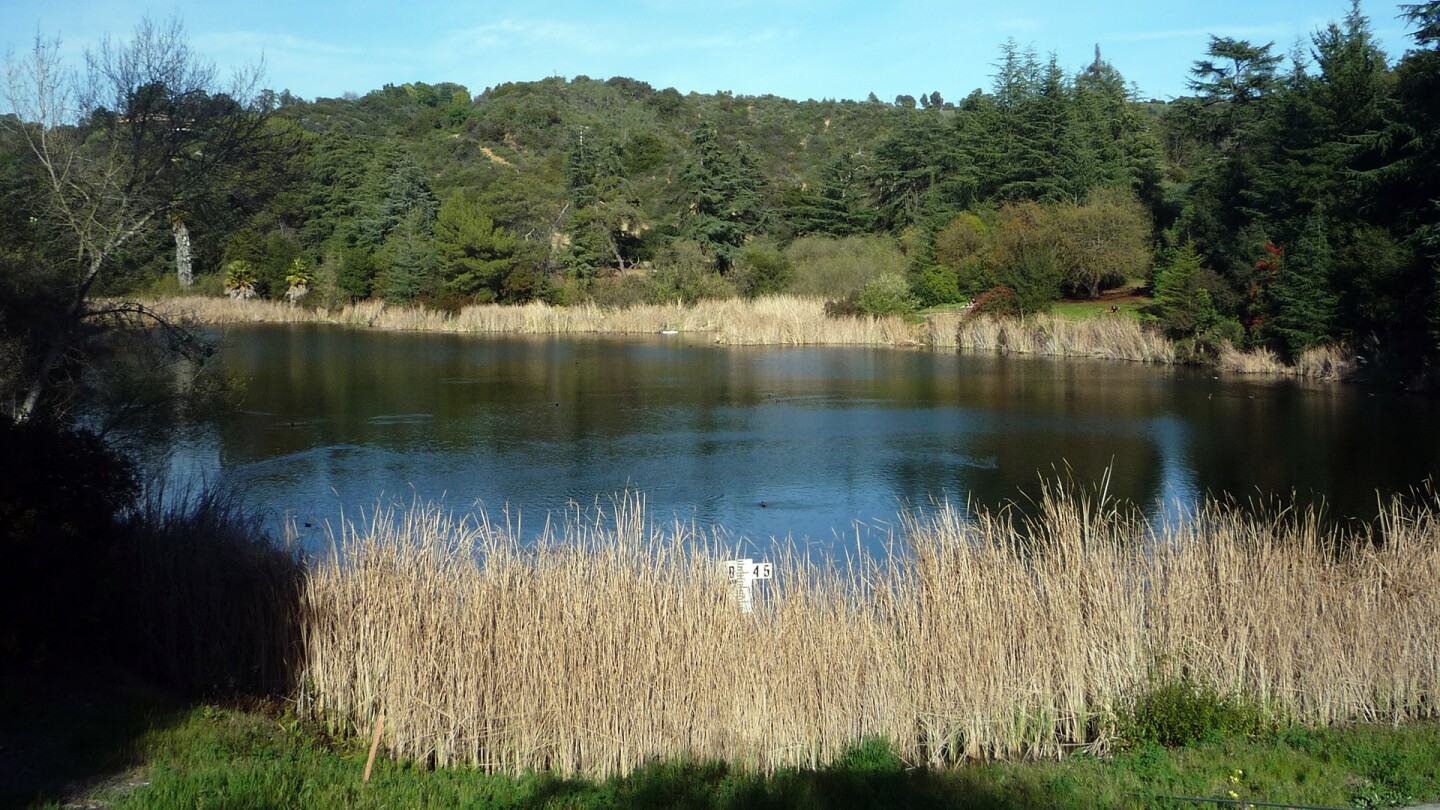 Franklin Canyon Park Lake