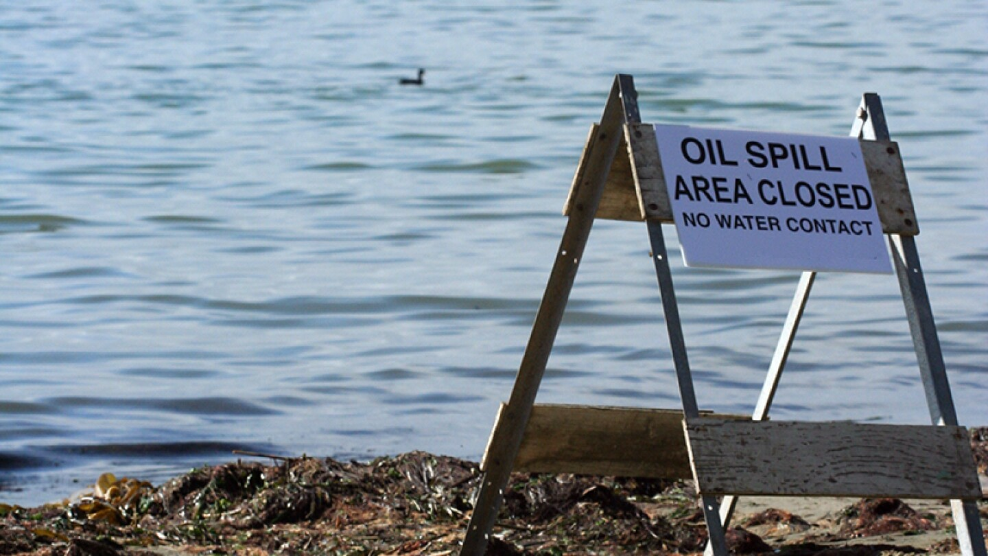When oil hits water, both humans and wildlife suffer. | Photo: Chris Clarke