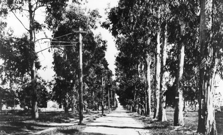 Circa 1900 view of Santa Monica Boulevard in present-day Hollywood. Courtesy of the Photo Collection - Los Angeles Public Library.