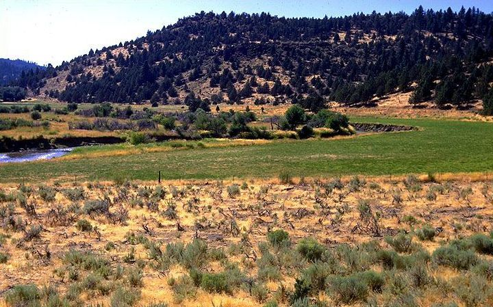 Pit River Valley, near Canby, Modoc County, California. | Robert F. Ettner/U.S. Forest Service