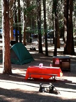 kings-Canyon-camping-040313