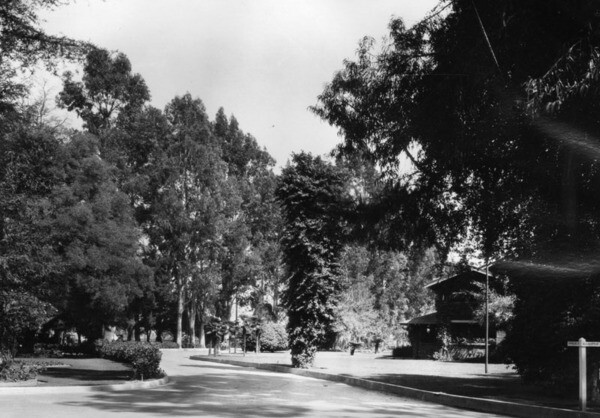 View looking east on Consuelo Drive at the Los Angeles County Farm in Downey, 1928 | Photo: Security Pacific National Bank Collection, Los Angeles Public Library