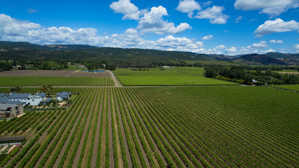 Aerial photo of Napa vineyards | Photo: Pierre LeSage, some rights reserved