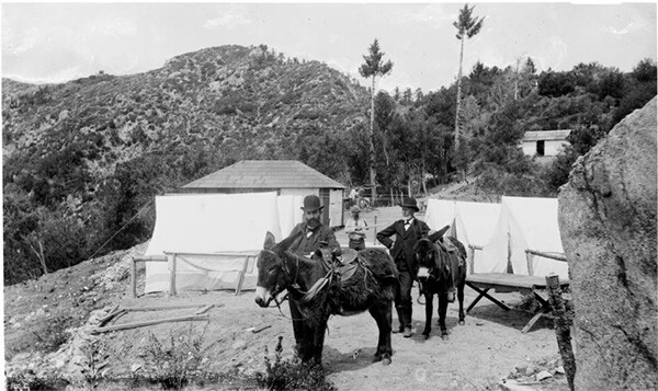 Two Men with donkeys and tents on Mount Wilson, California, 1887.  Martins Camp on the Old Trail. | Digitally reproduced by the USC Digital Library; From the California Historical Society Collection at the University of Southern California