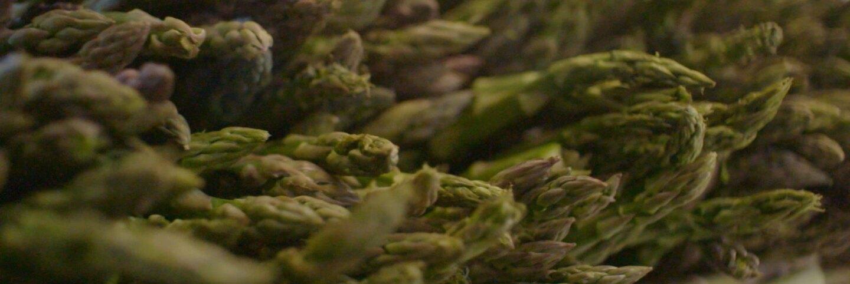 """Asparagus   Still from """"Broken Bread"""" Access"""