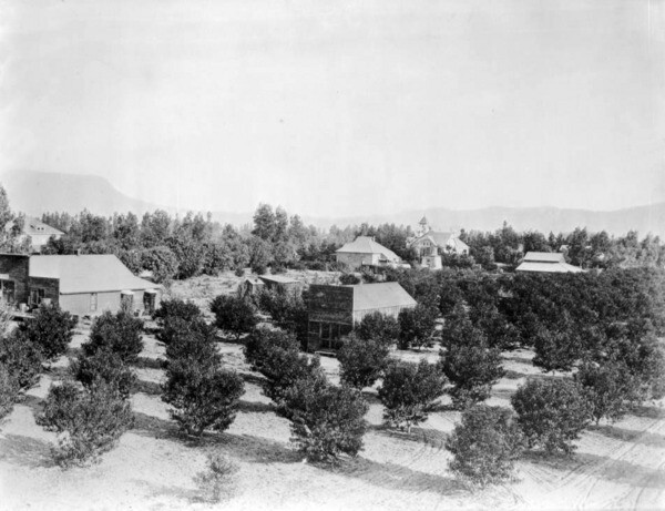 The town of Toluca (now North Hollywood) in 1894. Courtesy of the USC Libraries - California Historical Society Collection.