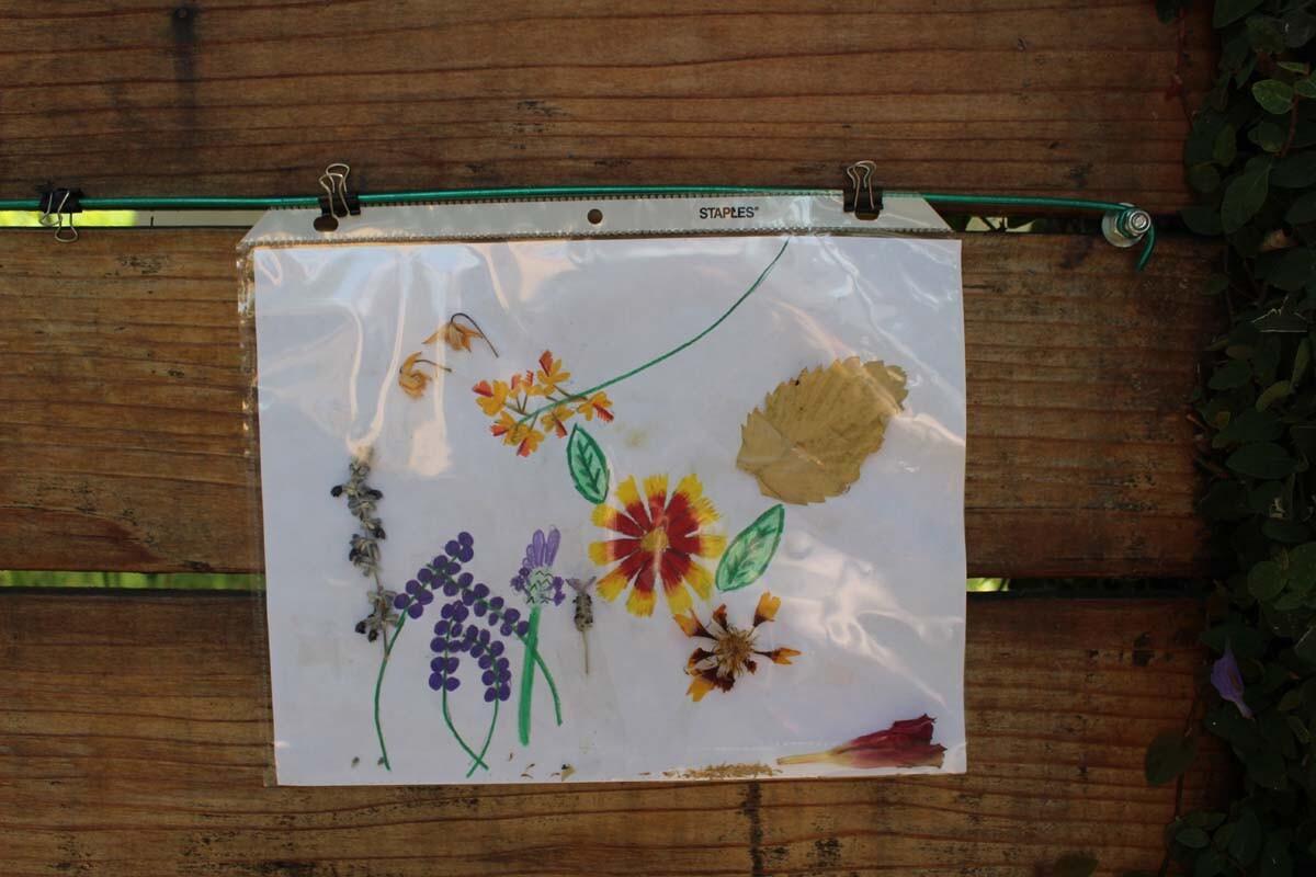 A picture featuring dried flowers hangs on Dan Fields' Los Feliz fence gallery.