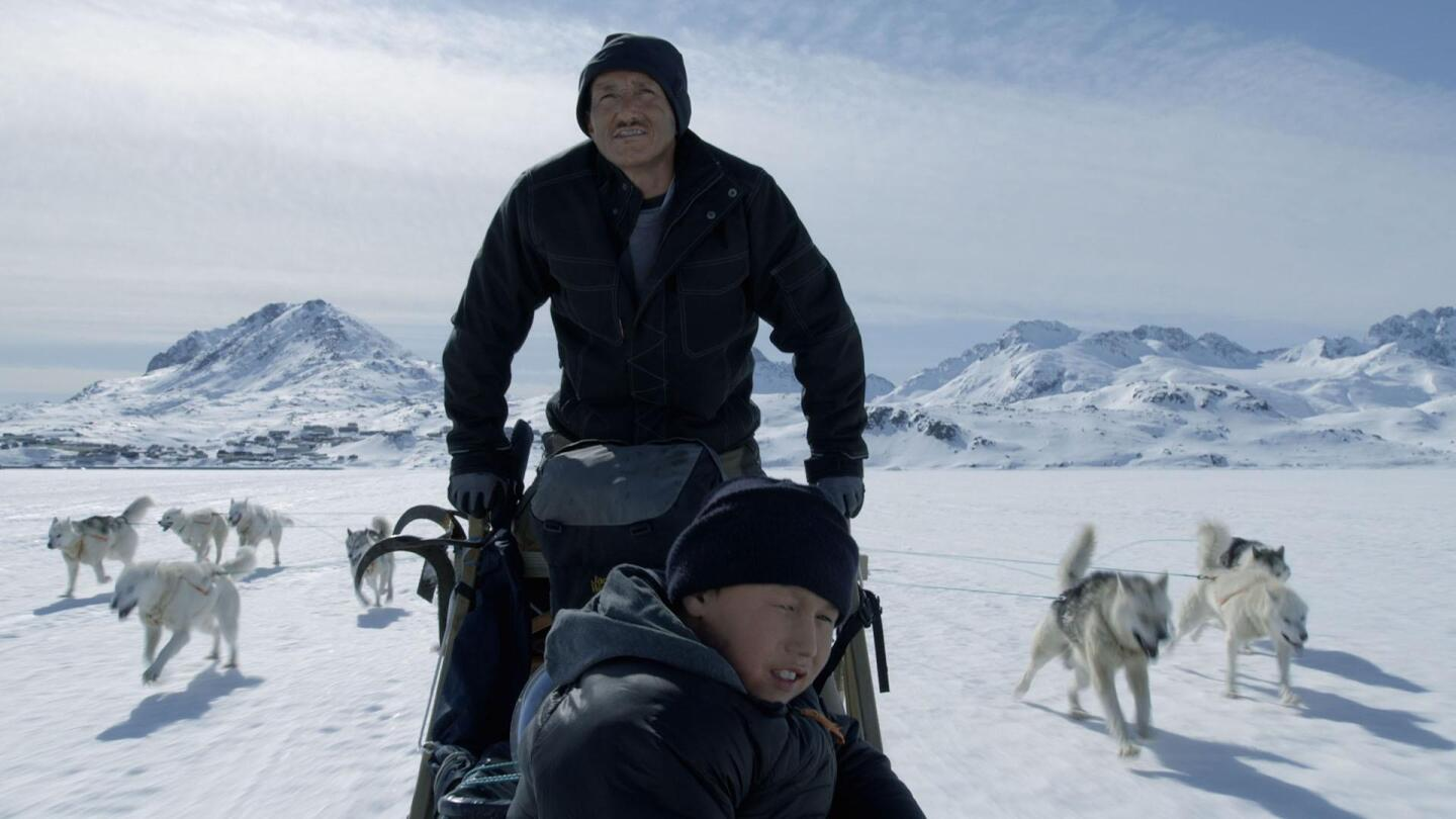 """A man and a boy on a sled in a snowy landscape with sled dogs running behind them. 