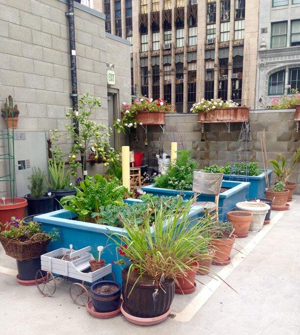 Zoe Howell's Parking Space Garden