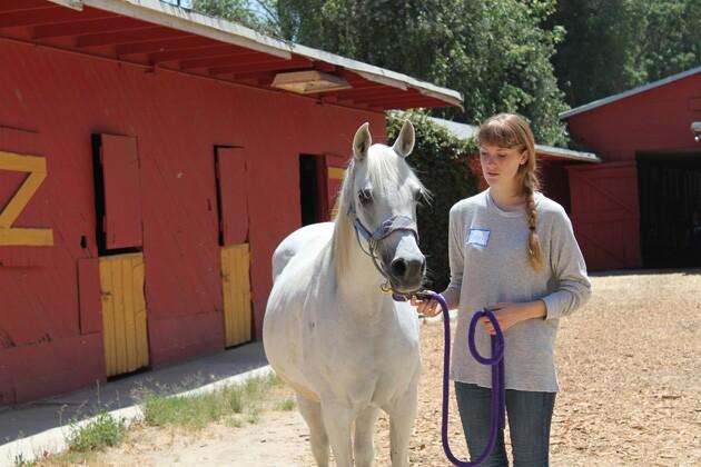 Kelci Mossat prepares a horse to ride.