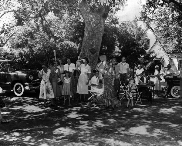 Residents form a protective barricade around an oak tree slated for removal by South Pasadena authorities, 1950. Courtesy of the Herald-Examiner Collection, Los Angeles Public Library.