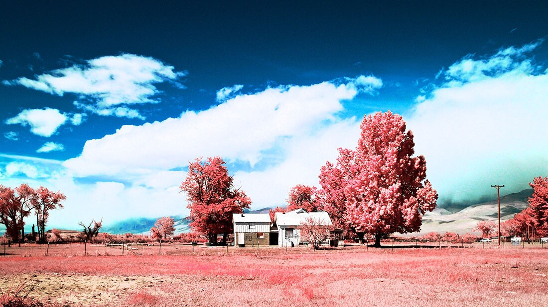 Boarded-Up Farm House - Color/Infrared Exposure - Bishop, CA - 2016   Osceola Refetoff