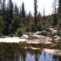 aldern-lead-dinkey-creek-10-2-16.jpg