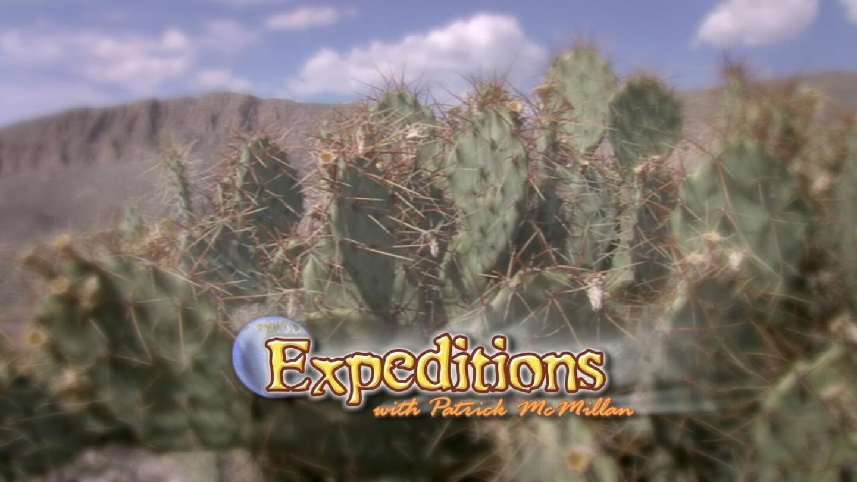 expeditionswithpatrickmcmillan.jpg