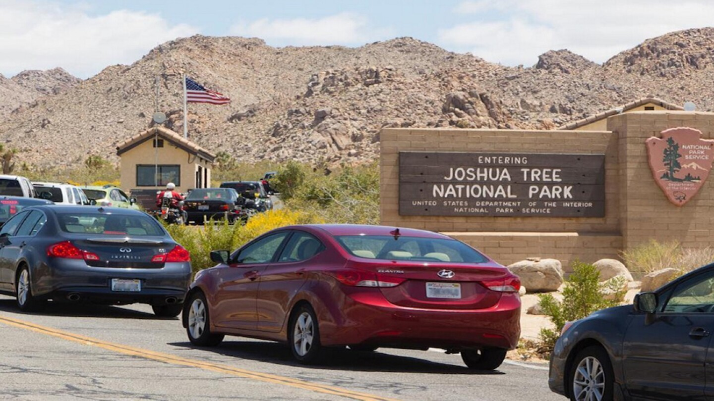 Long line of cars at Joshua Tree NP | Photo: NPS