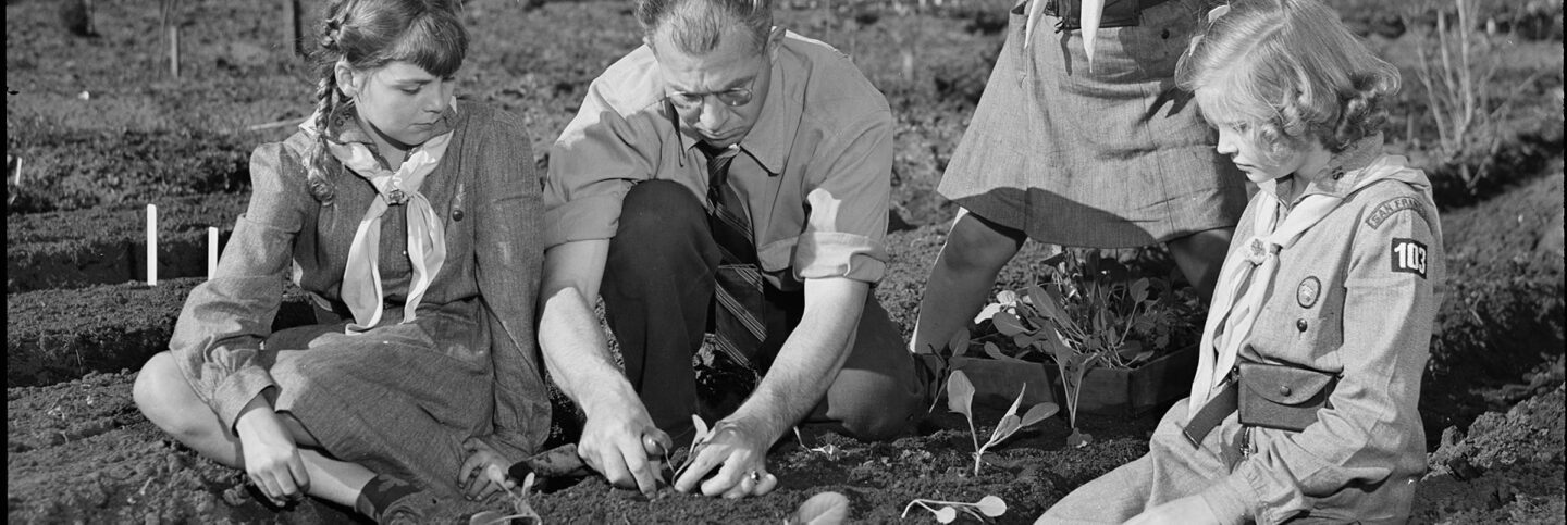 Professor Harry Nelson of San Francisco teaches his ten-year-old daughter Pat (left) and her Girl Scout friends some pointers in transplanting young vegetables in a Victory garden.  | Courtesy of the Library of Congress