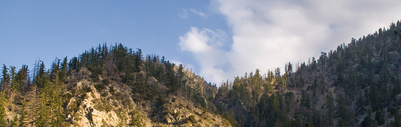 Distant ridgeline in the San Gabriel Mountains National Monument | Photo: Michael E. Gordon