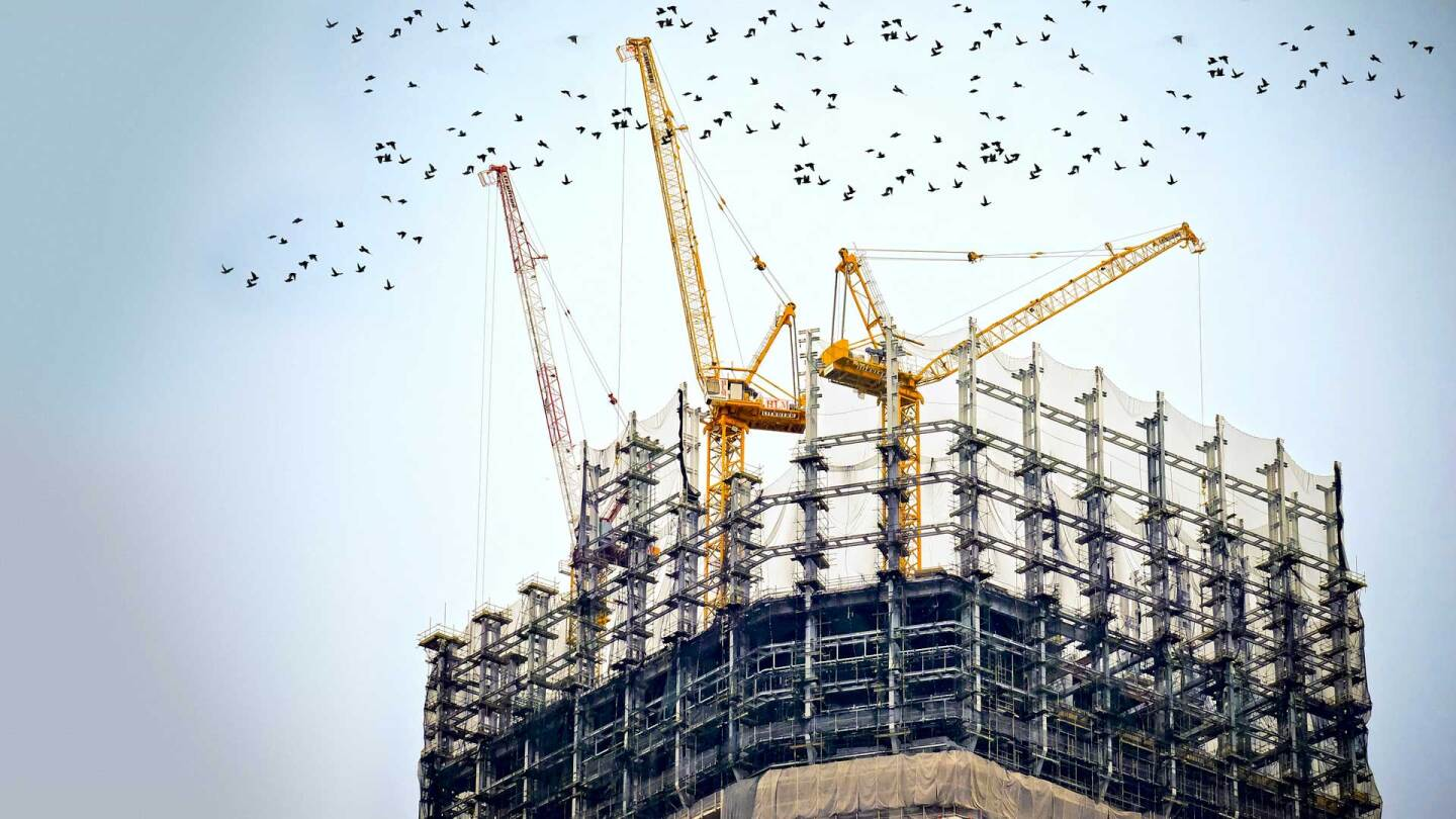 Birds flying around a building under construction. (Built to Last featured)