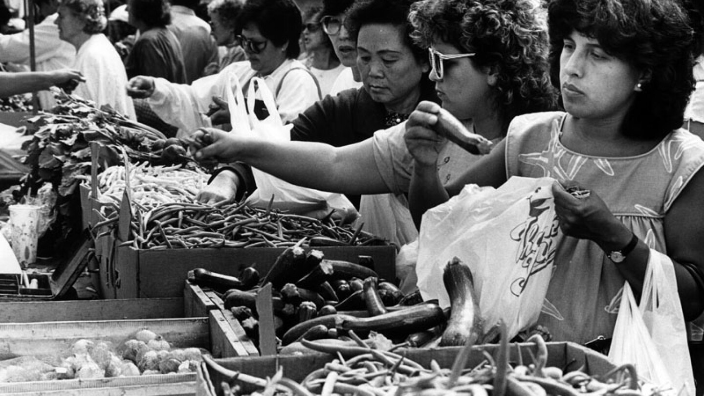 veggies1981