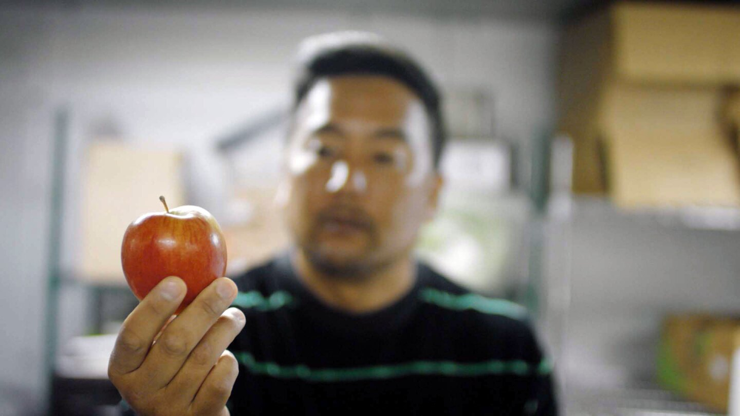 "Roy holds an apple rejected by the grocery store. | Still from ""Broken Bread"""