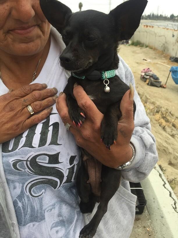 Deborah and Dog: Homeless Along LA River