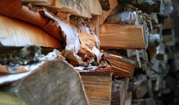 Heart, Wood.
