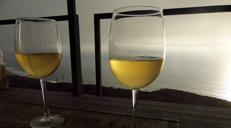 5 Local Wine Tasting Ventures